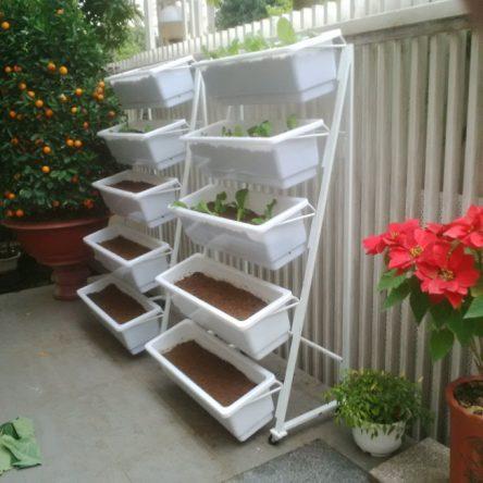 Khay trồng rau sạch thông minh nhỏ.