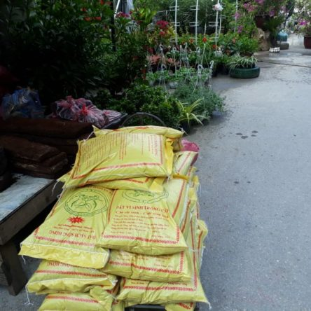 Đất trồng rau sạch, trồng cây của SonghongAgri.com.