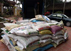 5 tấn phân bò giao tại Phùng Hà Nội